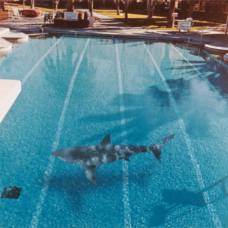 Pool #6: Ruscha/Hirst